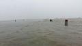Mưa lớn kéo dài, nhiều nơi ở Thừa Thiên -  Huế bị nước 'bao vây'