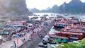 Quảng Ninh: Nhiều doanh nghiệp có dấu hiệu gian lận vé tàu cao tốc trên biển
