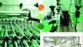 Cần lưu ý gì khi lựa chọn nhà máy gia công thuốc?