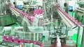 5 lý do đối tác gia công mỹ phẩm nên chọn nhà máy Dược phẩm CNC Abipha