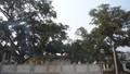 Làng ven sông Đà