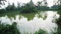 Ngày Xuân thăm giếng làng 500 năm chưa bao giờ cạn nước