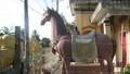 Choáng trước tượng ngựa có đầy đủ nội tạng ở Hậu Giang