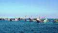Tàu cá Quảng Ngãi vẫn liên tục bị Trung Quốc uy hiếp