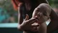 Vi rút Zika đã  xuất hiện tại Việt Nam?