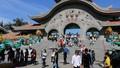 Các gia đình đổ đến công viên vui Tết Dương lịch