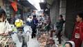 Độc đáo phiên chợ Gà ở Hà Nội