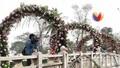 Sở Văn hóa yêu cầu bỏ hoa giả tại Lễ hội hoa hồng