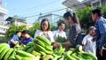 Thành lập ban chỉ đạo 'giải cứu' chuối cho nông dân Đồng Nai