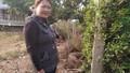 Đắk Lắk: Người dân cần một bản án khách quan