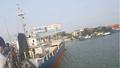 Xác định nguyên nhân tàu nghìn tấn dính chặt vào dầm cầu Đồng Nai
