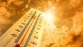 Bệnh mùa nắng nóng…