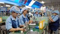 Mức đóng BHXH của người lao động chiếm bao nhiêu % mức lương?