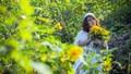 Tháng 10 vàng tưoi trên những cánh hoa Dã Quỳ