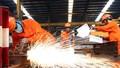Bảo hiểm tai nạn lao động - chính sách an sinh hữu ích