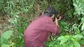 Điều tra vụ người chết trong rừng nghi bị bắn nhầm