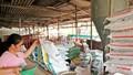 Hiệp hội Thức ăn chăn nuôi được làm việc với Tổng cục Hải quan