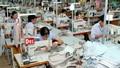Kết luận của Thủ tướng về hỗ trợ DN phục hồi sản xuất kinh doanh