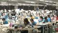 Tham gia TPP: Việt Nam là nước hưởng lợi nhất