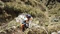 Cheo leo dọn rác quanh đỉnh Fansipan