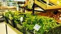 Chỉ có 7 điểm bán thực phẩm sạch trên thành phố Hà Nội