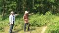 Quảng Trị: Hai nông dân bỏ công khai hoang nhưng… không được khai thác
