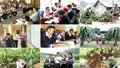 Dành nguồn lực cho tín dụng chính sách để giảm nghèo bền vững