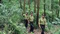 Cần xác định đúng bản chất của giao rừng, thu hồi rừng