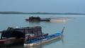 Tận diệt thủy sản trên hồ Trị An