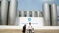 Gia đình Ốc Thanh Vân bất ngờ về nhà máy sữa số 1 Việt Nam
