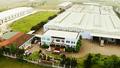 Cty TNHH Long Hải: Phát triển sản xuất gắn với bảo vệ môi trường