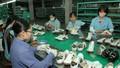 Trước thềm EVFTA: Ngành Da giày thuận lợi vào thị trường châu Âu
