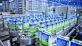 Lộ diện nhà đầu tư mua 48 triệu cổ phiếu Vinamilk