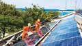 """Nhà đầu tư điện mặt trời """"chạy nước rút"""" để hưởng ưu đãi"""