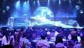 Sun Group tri ân khách hàng bằng đêm nghệ thuật đỉnh cao