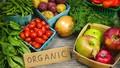 """Thị trường nông nghiệp hữu cơ: Doanh nghiệp khó sống vì """"vàng thau"""" lẫn lộn"""