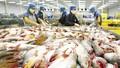 Mỹ từ chối nhập khẩu cá tra hun khói Việt Nam