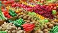 Xuất khẩu nông sản đạt hơn 3 tỷ USD trong tháng đầu tiên
