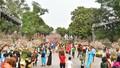 Người dân nô nức ngắm hoa anh đào giữa lòng thủ đô