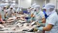 """Xuất khẩu thủy sản: Doanh nghiệp """"méo mặt"""" vì giấy chứng nhận kiểm dịch"""