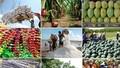 6 tháng đầu năm: Xuất khẩu nông nghiệp đạt 19,4 tỷ USD