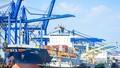 Hơn 5 triệu container được quản lý qua Hệ thống quản lý hải quan tự động