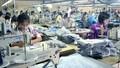 """Quảng Ninh: Sẽ áp dụng biện pháp """"mạnh"""" để thu hồi nợ đọng bảo hiểm"""