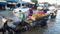 Ám ảnh cảnh triều cường dâng cao kỷ lục ở Bạc Liêu
