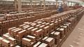 Doanh nghiệp xây dựng - vật liệu xây dựng lạc quan với triển vọng tăng trưởng