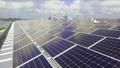 Sao Mai Solar PV1 gấp rút thi công để kịp đóng điện trước 30/6/2019