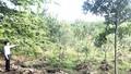 Dự án thu hồi đất ở huyện Cờ Đỏ, Cần Thơ: Người dân phản ứng quyết liệt vì giá đền bù quá thấp
