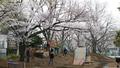 """Sân chơi phiêu lưu phong cách Nhật Bản tại KĐT Ecopark – thử thách """"lạ"""" cho các bé dịp hè này"""