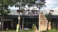 """Cái gọi là """"Tập đoàn địa ốc Alibaba"""" sống chết chống đối lực lượng cưỡng chế """"dự án ma"""": Hành vi coi thường kỷ cương phép nước phải xử lý nghiêm"""