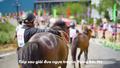 """Những khoảnh khắc ấn tượng từ giải đua """"Vó ngựa trên mây"""""""